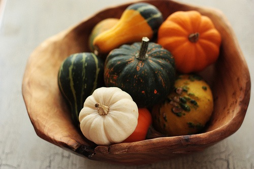 Decorative (and edible) gourd season