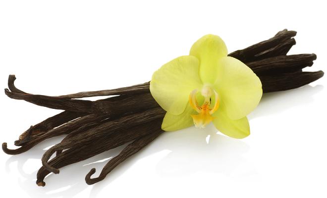 The Beauty of Vanilla Spice
