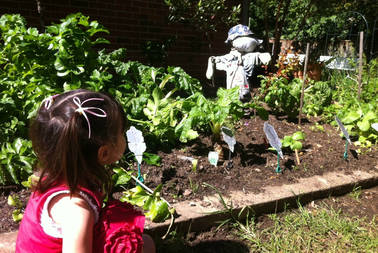 Play :: 8 Fun Earth Day Activities