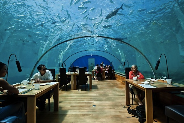 ImageoftheDay.10-Awe-Inspiring-Underwater-Spaces-10