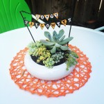 TA DA! Super easy holiday succulent centerpiece using a cakehellip