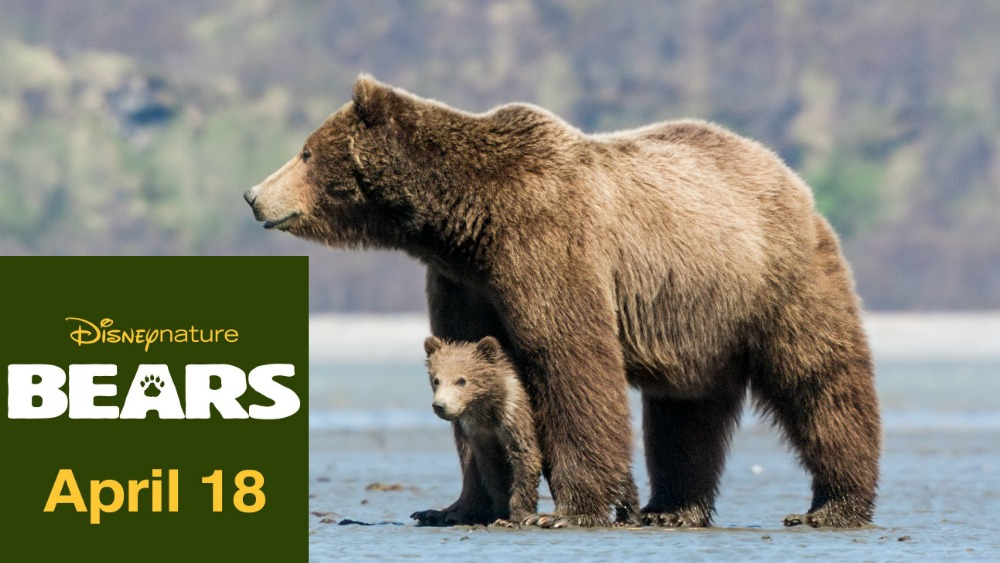 Disneynature Celebrates Earth Day with their new movie BEARS