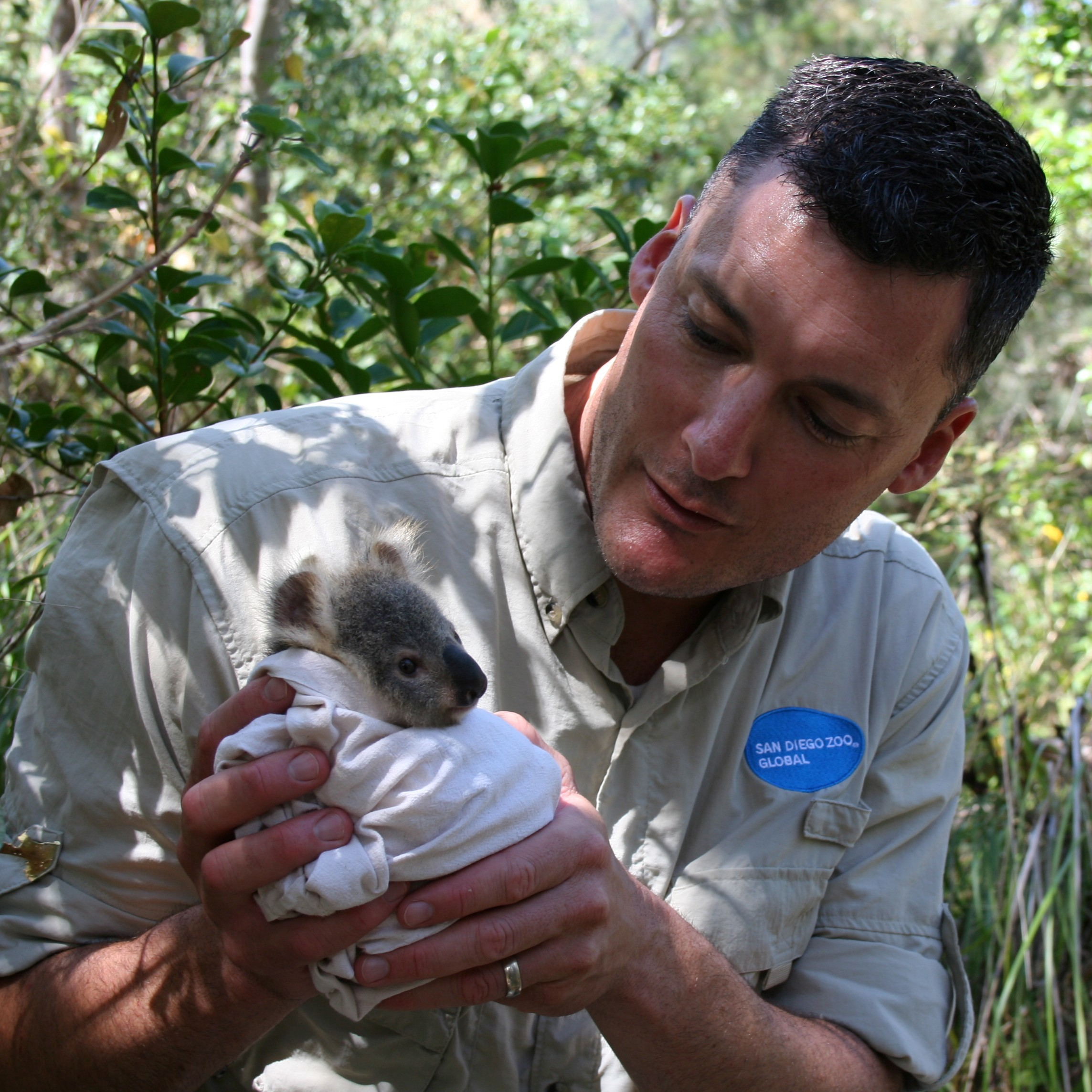 San Diego Zoo' Global Supports Wildlife Conservation