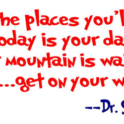 Dr seuss oh the places youll go 2
