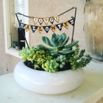 Yippee! Time to start decorating for Fall! Check out ourhellip