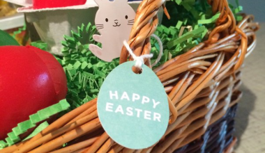 Go Green this Easter :: Basket and Craft Ideas!