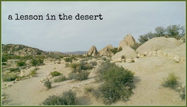 A lesson in the desert