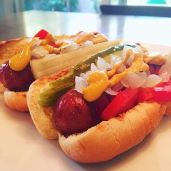 Delicious Chicago-style Hot Dog Recipe