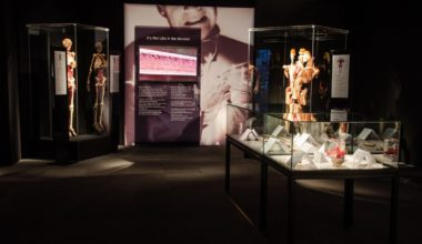 Body Worlds: Pulse Exhibit Now Open at the California Science Center through February 2018!