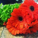 Fresh flowers always make my day! Loving the orange Gerberhellip