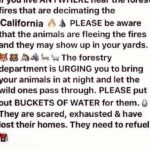 Please share! They are saying the thomasfire is the 4thhellip